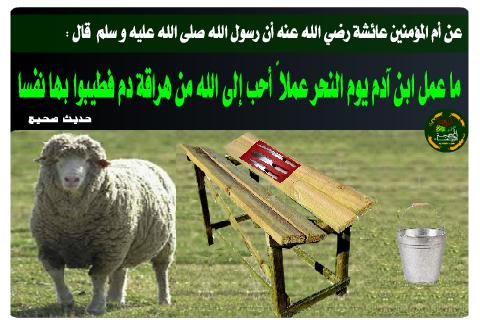 أحكام الأضحية في الإسلام