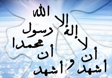 من كان آخر كلامه لا اله إلا الله دخل الجنة