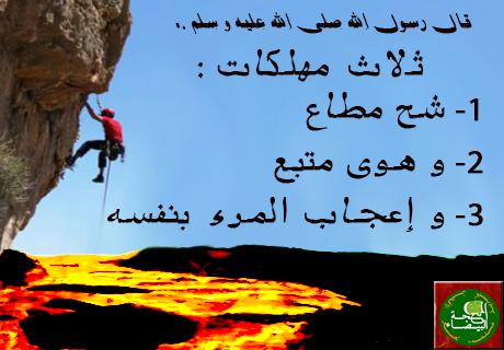 http://alhibr1.com/index.php?num=657